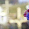 Finados: Dia de rezar pelos fieis defuntos que foram morar na eternidade, e por aqueles que padecem no purgatório