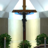 Francisco reza pelos médicos e sacerdotes mortos na assistência aos doentes de coronavírus
